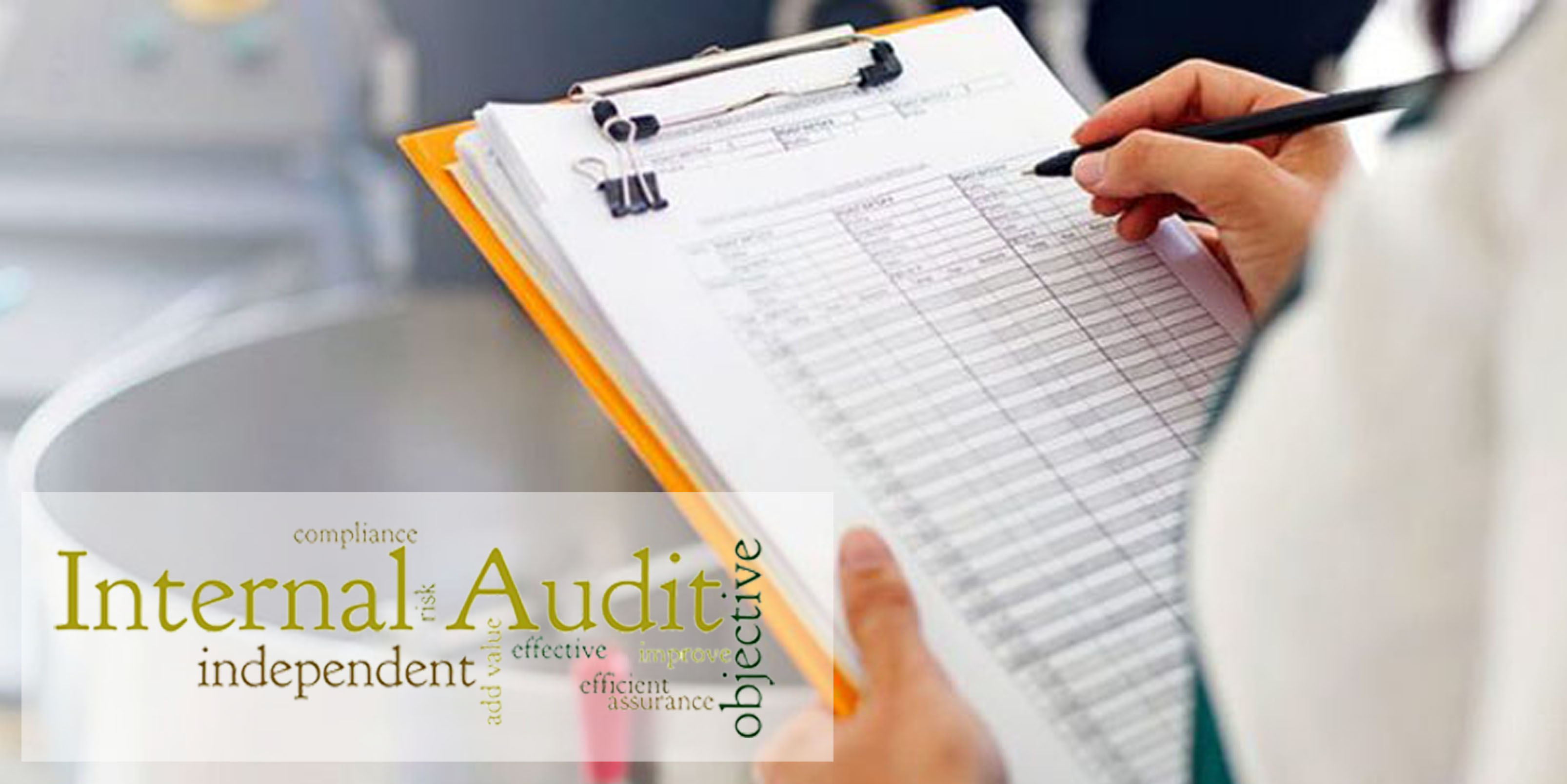 Internal Quality System Auditor
